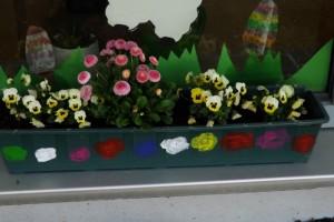 Blumen OGS 001 (640x427)